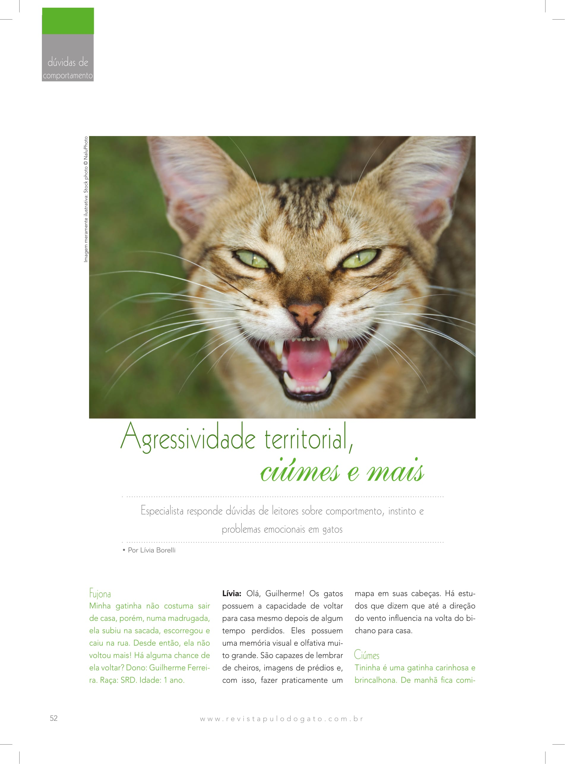 pauta_duvidas-de-leitores_revista-pulo-do-gato_1-1