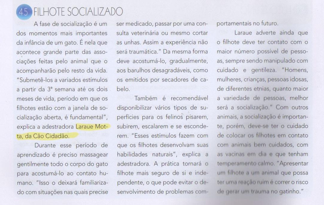 pulodogato_edicao100_materia2_laraue